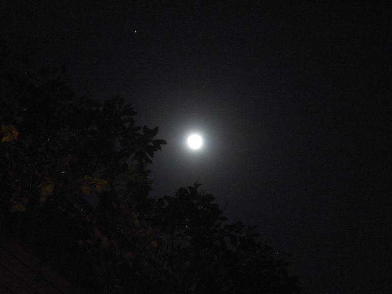 20100130_満月-luna piena_RIMG6679