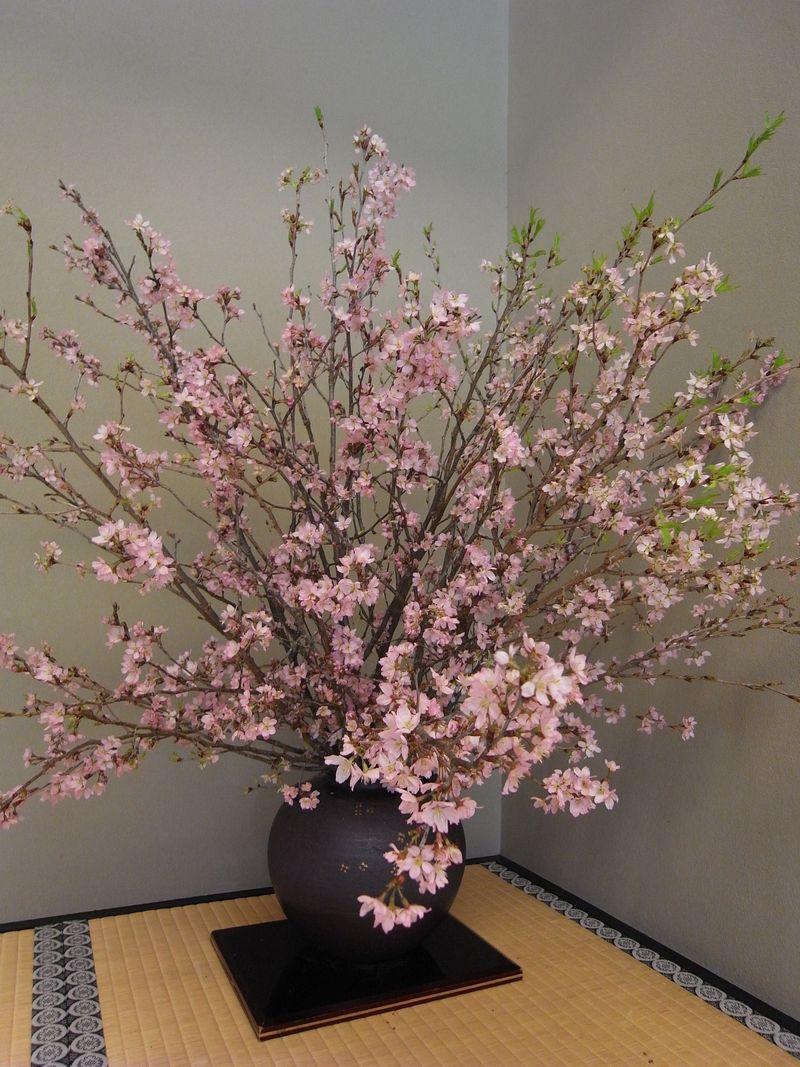20100331_桜の時間_RIMG7859