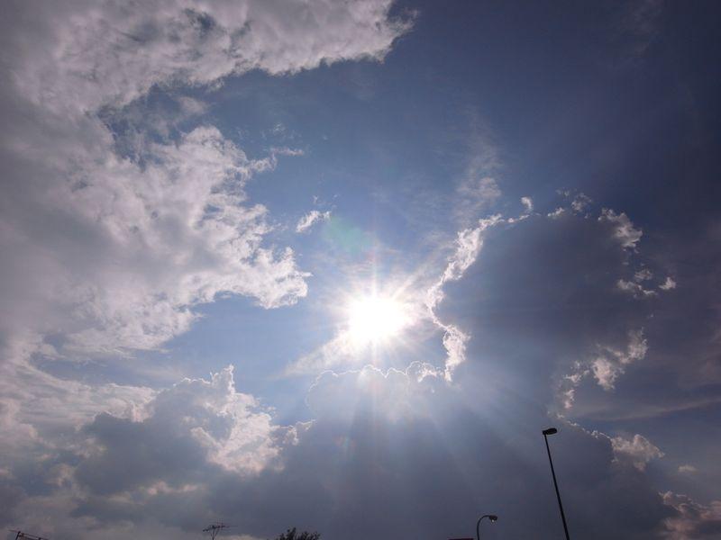 20100831_大地と太陽、そして愛情と_R0020365