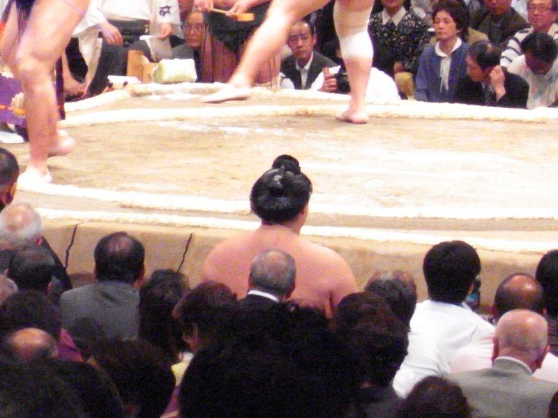 20101117_からだにも惹かれる、相撲って_R0018774