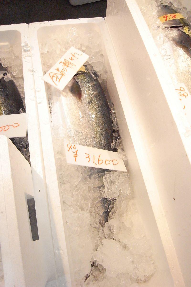 20111226_北の漁場で寒鰤調達_RIMG6117