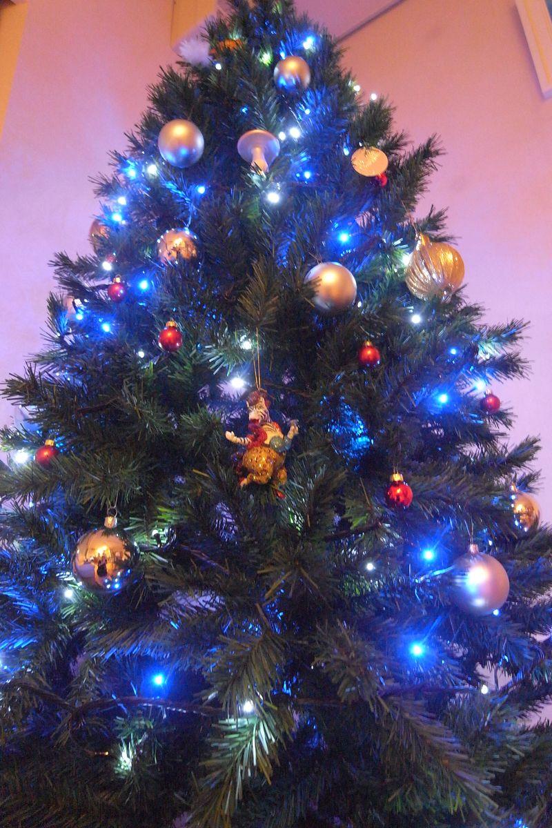 20111128_Christmas tree_RIMG5479