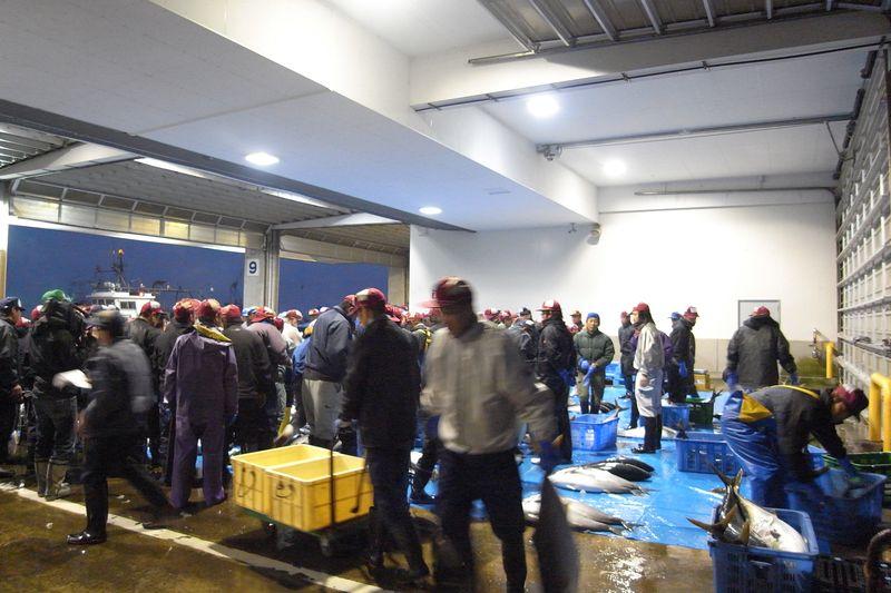 20111225_北の漁場でのセリ_RIMG6059