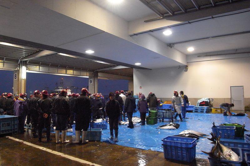 20111225_北の漁場でのセリ_RIMG6068