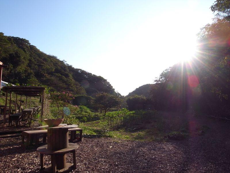 20121023_畑_RIMG10332