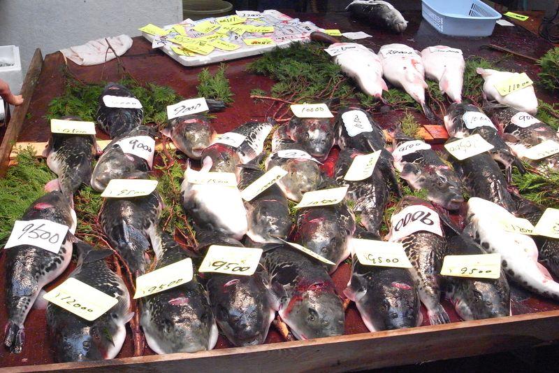 20130107_年の〆には市場の巡回。錦市場と黒門市場_RIMG12709