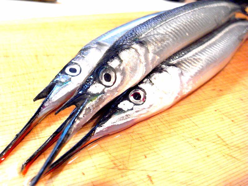20130313_細魚をおろします_RIMG7558E-1
