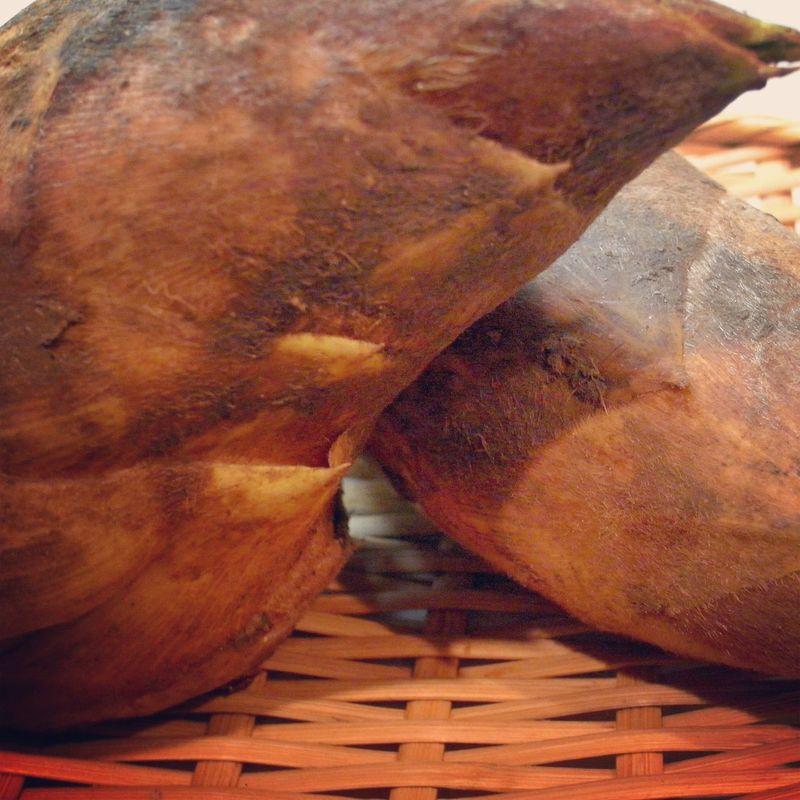 20130402_420(土)のAL Kitchenは「筍やふきを使って、春の味を楽しむ」です_RIMG8533E