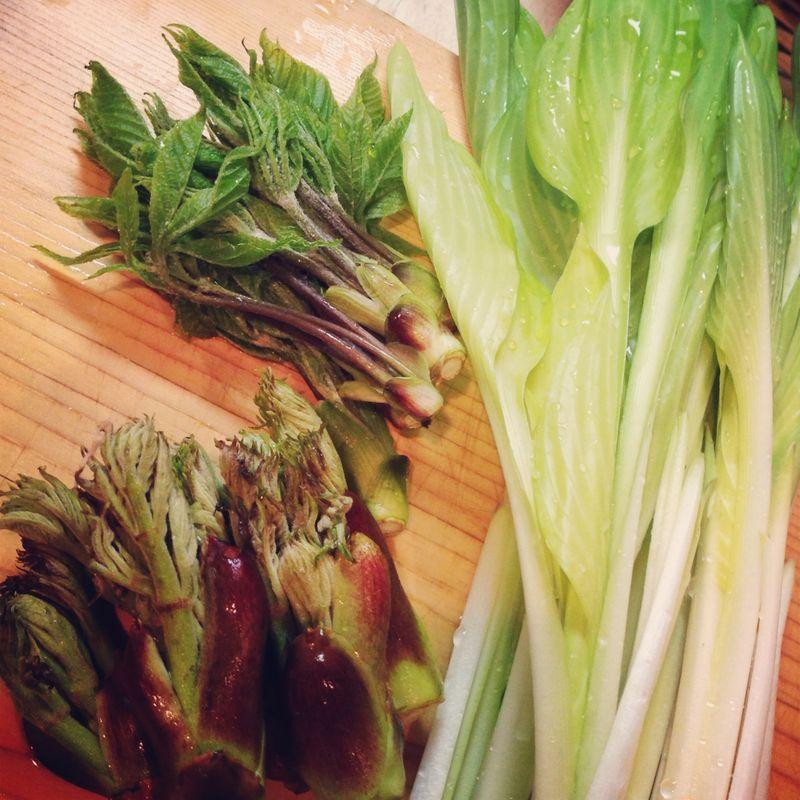 20160325_4月のAL Kitchen 和食の基本レッスンは、筍と山菜、です。_IMG_7912
