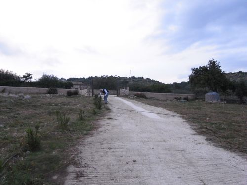 RIMG2011